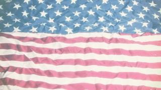 Subtle Flag