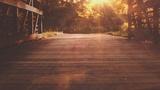 Summer Light Bridge