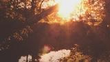 Summer Light Creek