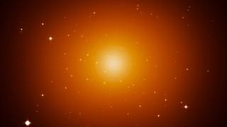 Sun Stars