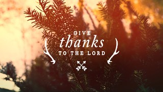 Thanksgiving Light Thanks