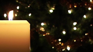 White Candle And Tree