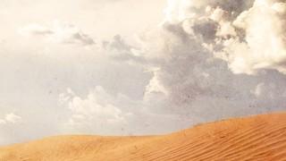 Wilderness Horizon