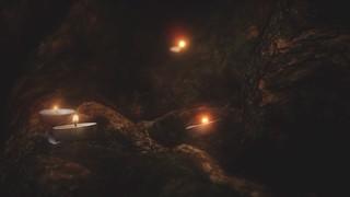 Willow Lights Secret