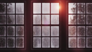 Winter Windows Frosted