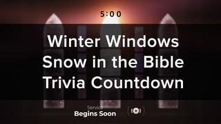 Winter Windows Trivia Countdown