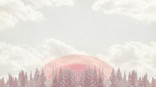 Winter Wonderland Forest Sky