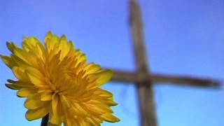 Yellow Flower Cross 1