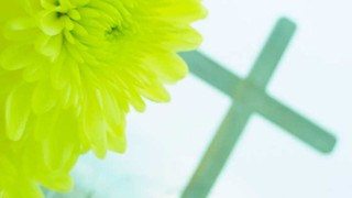 Yellow Flower Cross 2