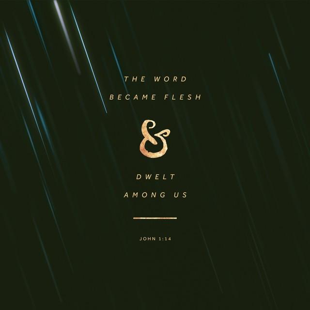 Christmas John 1:14