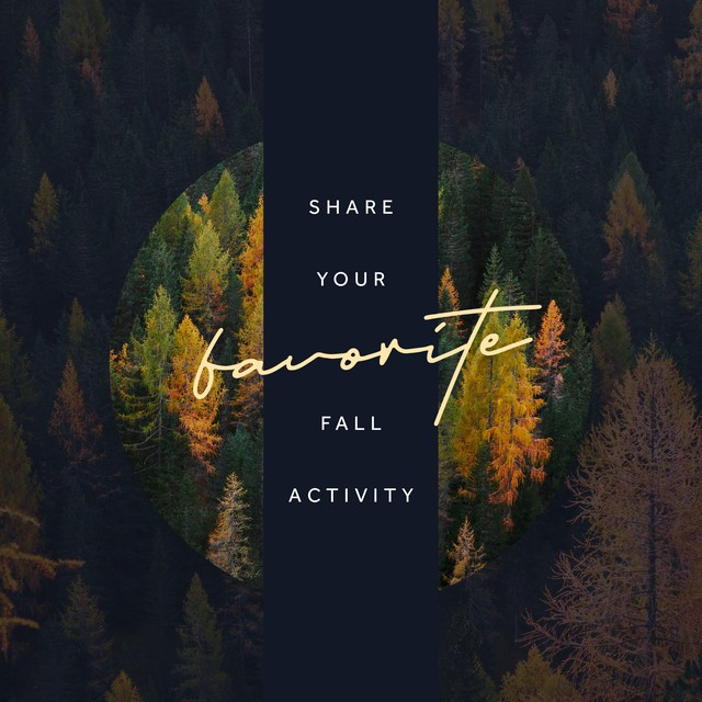 Favorite Fall Activities