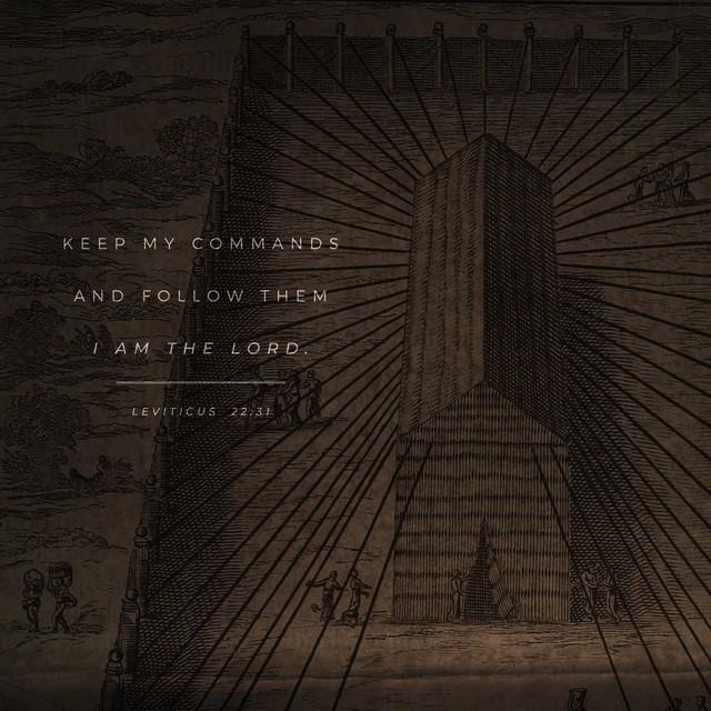Leviticus 22:31