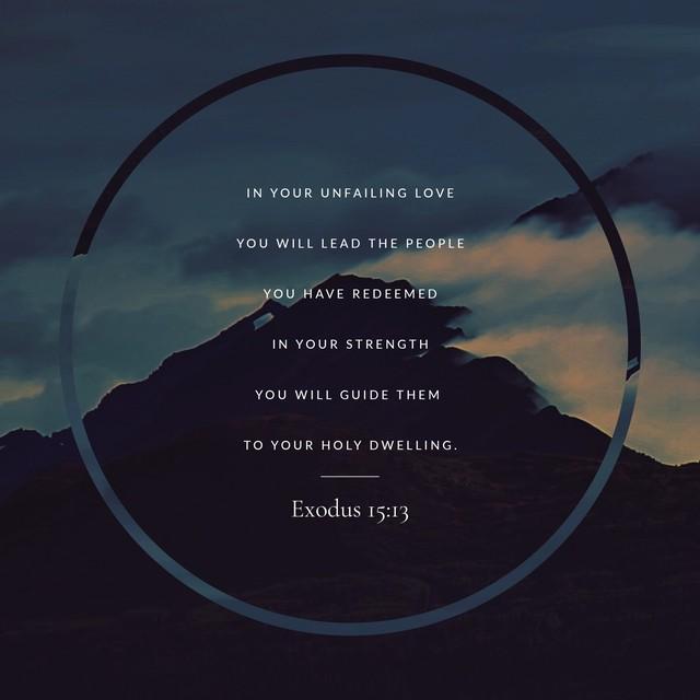 Misty Mountain Exodus 15:13