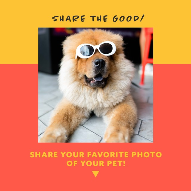Share the Good - Pets