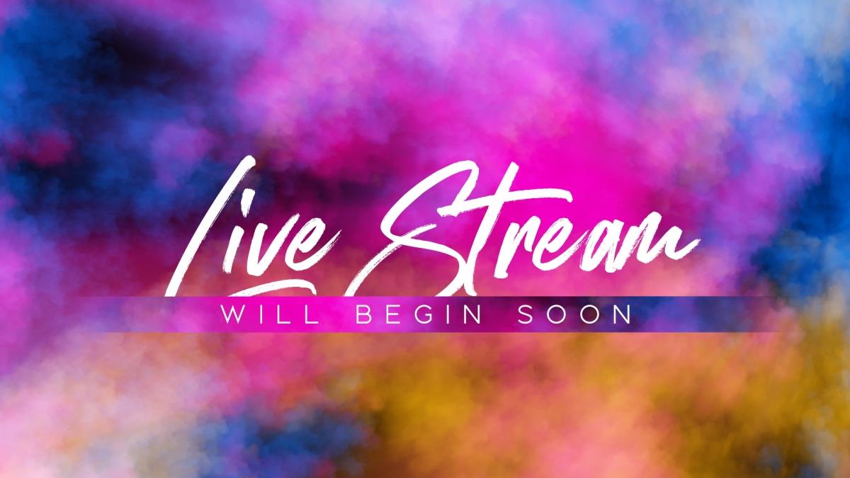 Color Fog Live Stream