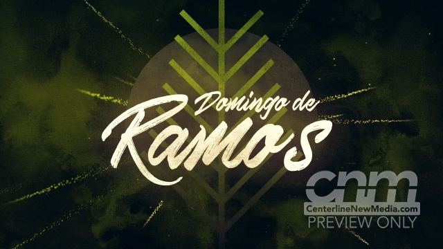 Particle Rays Palm Sunday Title (Spanish) Still