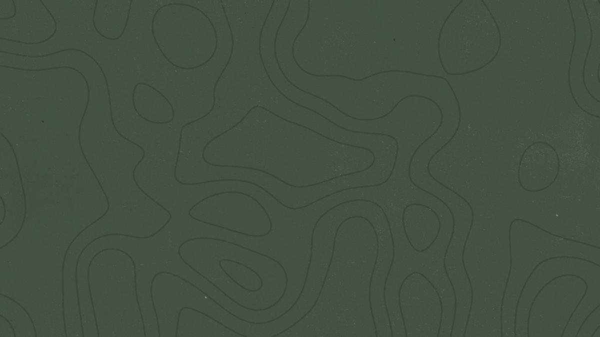 Topo Lines 01