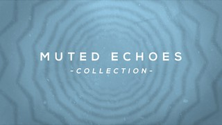 Muted Echoes