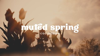 Muted Spring