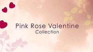 Pink Rose Valentine