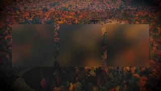 Autumn Colors Burst Alt
