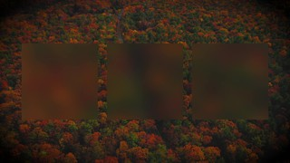 Autumn Colors Drive Alt