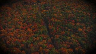 Autumn Colors Drive