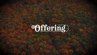 Autumn Colors Offering