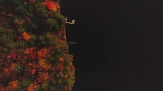 Autumn Colors Shore