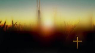 Days End Field Cross