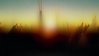 Days End Field