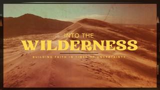 Into The Wilderness Sermon
