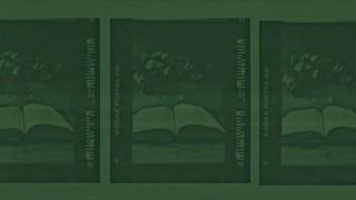 Filter Frames Green