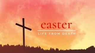 Horizon Crosses Easter