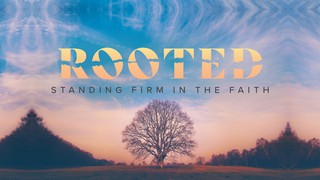 Rooted Sermon