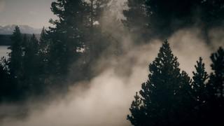 Misty Lent Vista