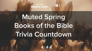 Muted Spring Trivia Countdown