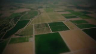 Open Fields Patchwork
