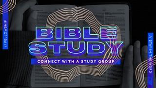 Bible Study Connect Sermon