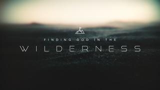 The Wilderness Sermon