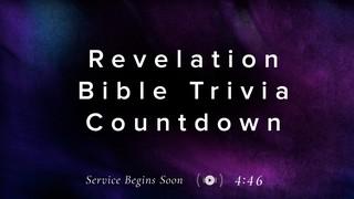 Subtle Color Trivia Countdown