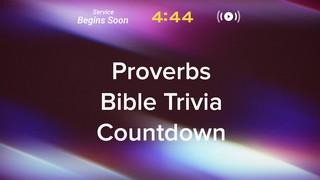 Subtle Light Trivia Countdown