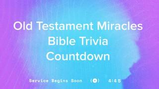 Summer Vibes Trivia Countdown