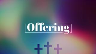 Vibrant Crosses Offering