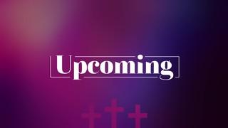 Vibrant Crosses Upcoming