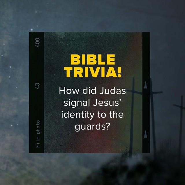 Bible Trivia 6